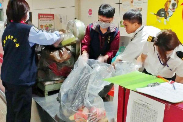 朝鲜爆发非洲猪瘟 韩国警戒