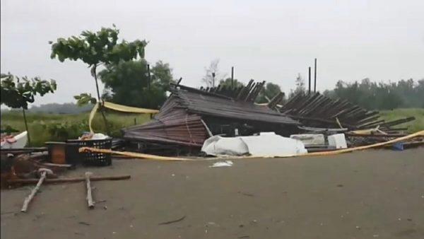 台南小五学童校外教学 竹棚躲雨被压死