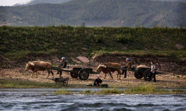 形势严峻 朝鲜被曝川金二会时向越南求粮援