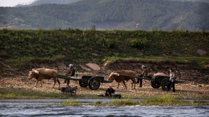 形勢嚴峻 朝鮮被曝川金二會時向越南求糧援