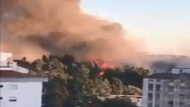葡萄牙野火来势汹汹 逾千消防员出动灭火