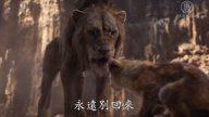 """新""""狮子王""""经典再现 全明星配音阵容"""