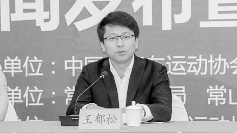 中共五毛党之殇 共青团五毛领头人落马