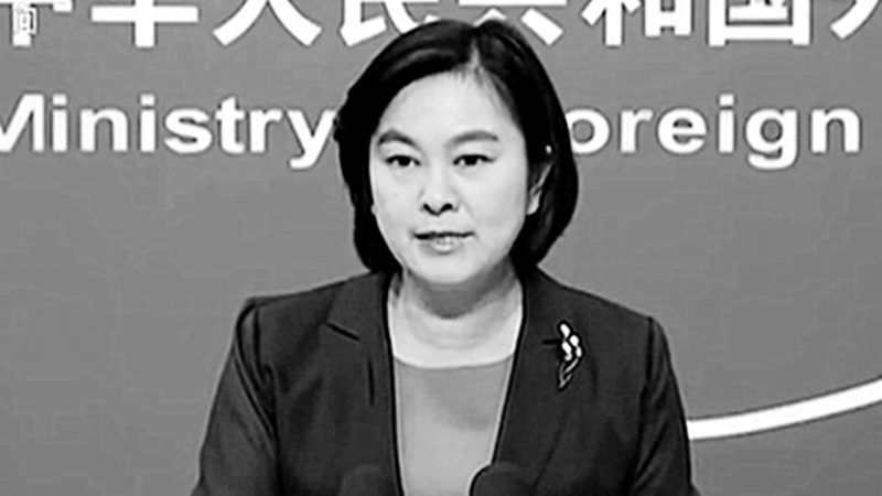 """""""女袁木""""华春莹露面 扬言解决中共挨骂问题"""