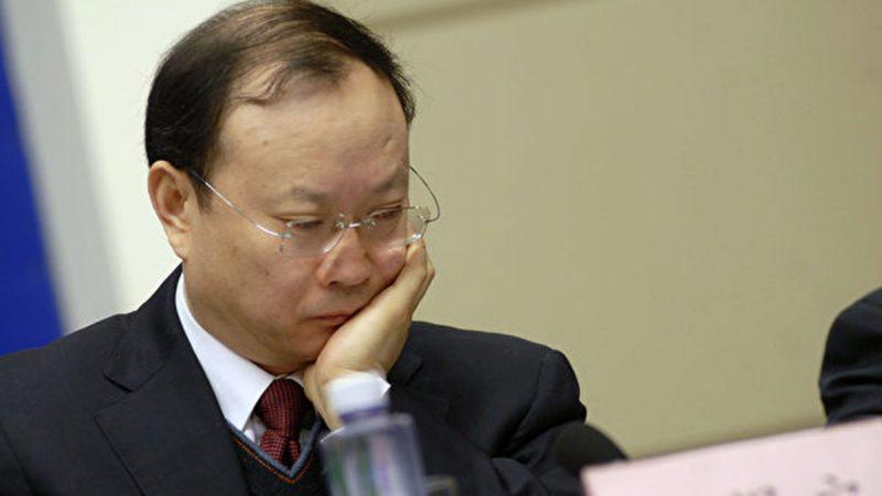 中共原统计局长花346万代孕生两子 内幕曝光