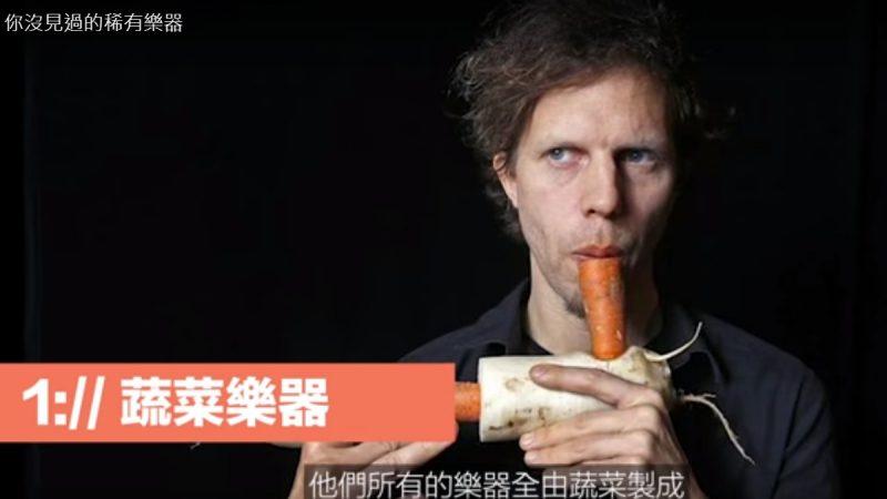 世界上無敵炫酷的樂器 蔬菜樂器(視頻)