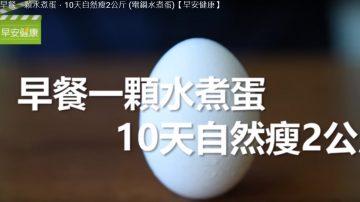 一顆水煮蛋的魅力 堅持10天瘦下2公斤 健康自然的瘦身法(視頻)