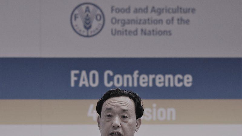 中共官员任联合国粮农组织总干事 当选内幕曝光