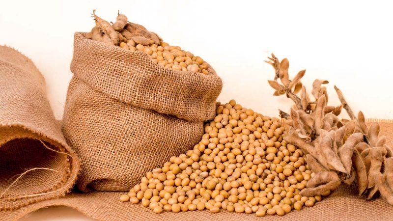 示好?迫不得已?路透:中国仍在偷买美大豆