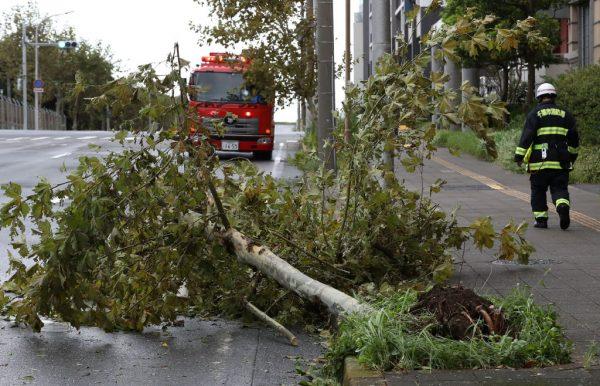 法西登陆日本关东酿1死20伤 交通大乱近百万户停电