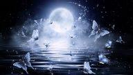 中秋夜神跡:月中落桂子 天香雲外飄