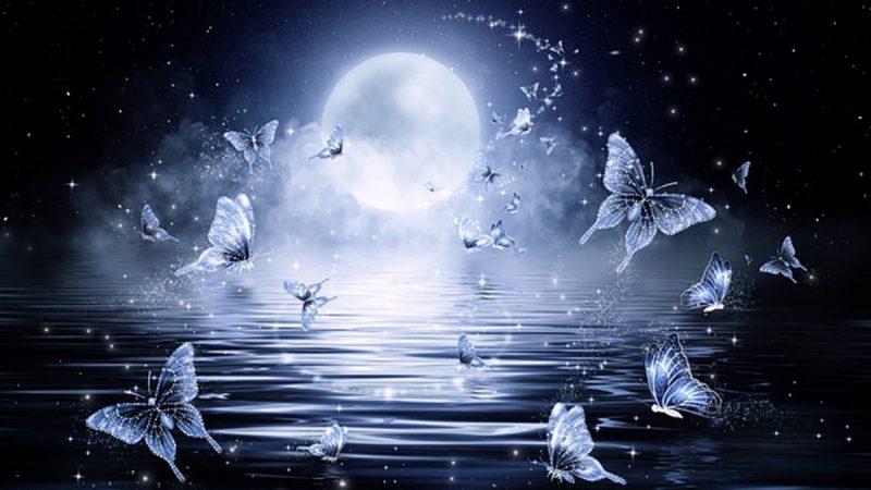 中秋夜神迹:月中落桂子 天香云外飘