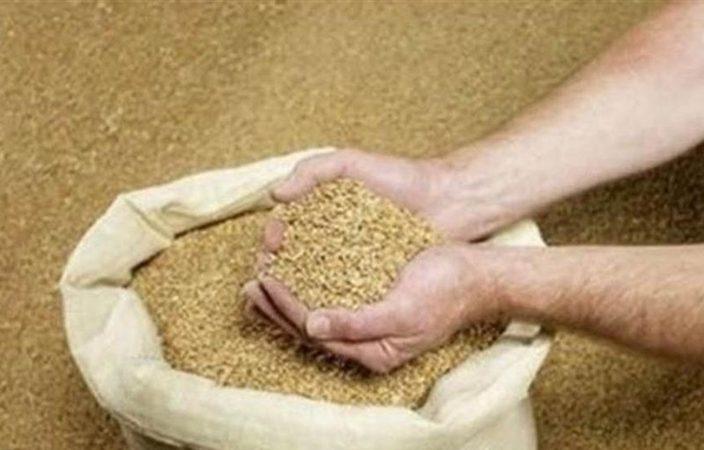 饲料危机?中共数十年首次从阿根廷进口豆粕
