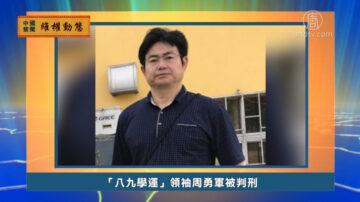 【禁聞】10月17日維權動態