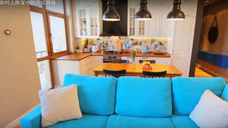 如何去除家中的各式異味 簡單的天然方法很實用(視頻)