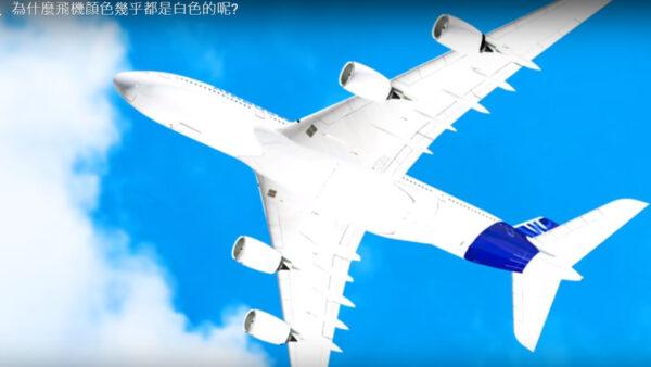 为什么飞机是白色的?原因是为了避开鸟类?(视频)