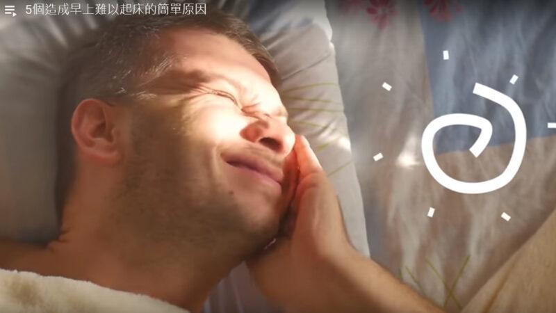 早上难以起床的5个原因 你都有吗(视频)