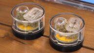 洛县检察官清除6.6万大麻犯罪记录惹争议