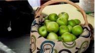 悉尼青苹果节 九万民众乐游春
