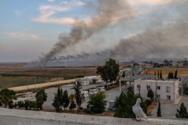 """土耳其设""""安全地带""""跨境扫荡库德族民兵"""