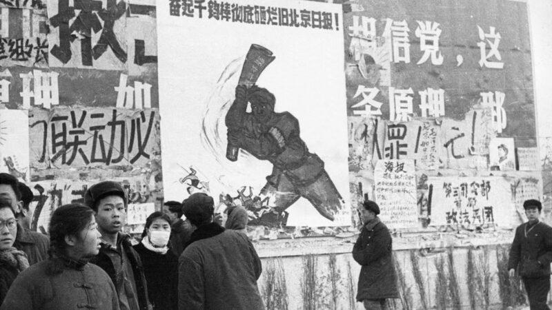 毛粉怒罵央視火爆網絡 網友嘲諷「一嘴毛」
