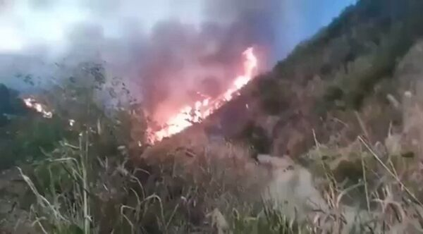 庐山大火连烧3天未扑灭 官媒集体噤声(视频)