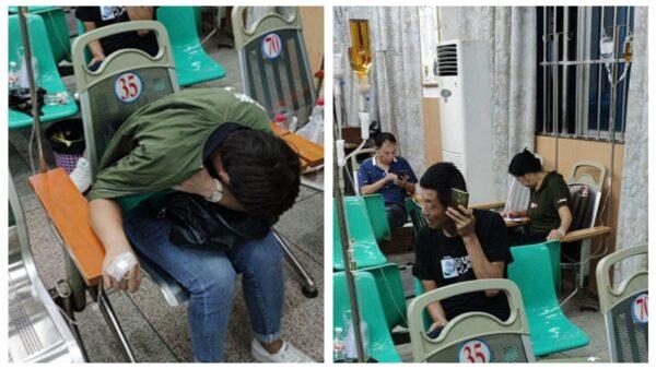 傳雲南爆嚴重登革熱疫情 800多人已死
