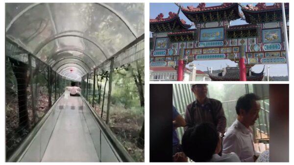 江蘇10多人玩玻璃滑道墜樹林 官方仍隱瞞傷亡情況