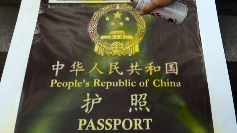 德媒揭中国签证申请表格藏黑幕