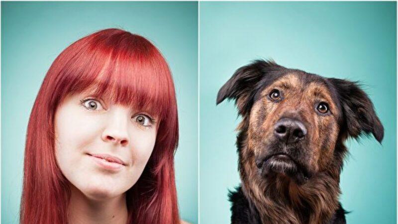 更准确新公式转换犬类和人类年龄