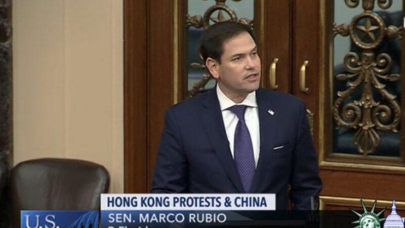 香港局势恶化 美参院快速通过《香港人权法案》