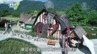 1000步的繽紛台灣:花蓮壽豐鳳林 童話咖啡館有故事