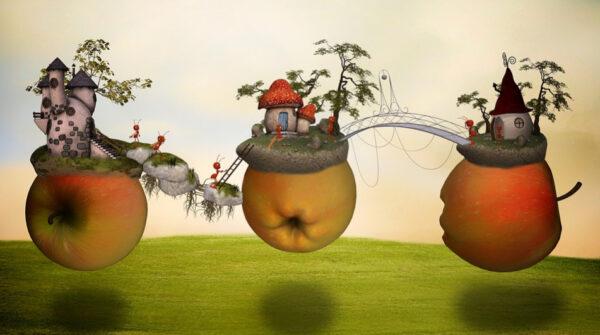 蚂蚁不再光顾你的家 去除蚂蚁的最佳方法(视频)
