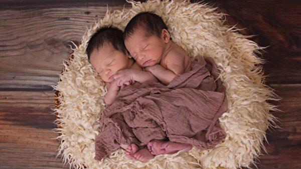 【命理】为何双胞胎兄弟命运会不相同?