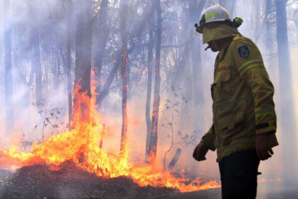 數量空前野火肆虐東澳 至少2死逾百房屋損毀