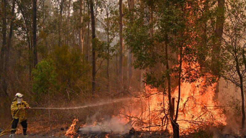"""""""灾难性""""火灾袭东澳 两省宣布紧急状态"""