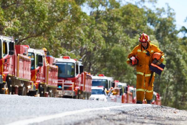 澳洲野火一度逼近悉尼 直升机灭火坠毁驾驶受伤
