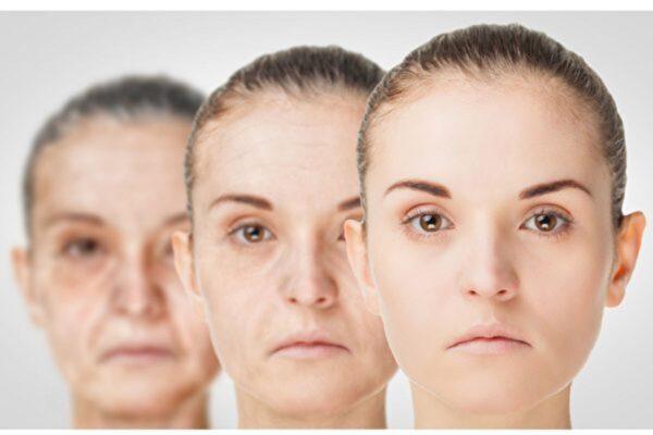 研究:人体老化在三个年龄段存在剧变
