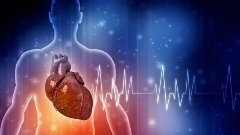 心脏停止跳动数小时仍可复活 美医生找到办法
