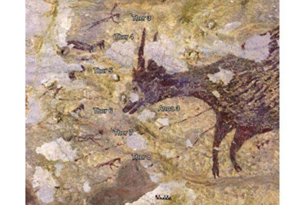 印尼发现四万年前神性壁画 进化论再受质疑