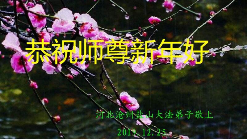 河北省滄州市鹽山縣法輪功學員恭祝李洪志師父新年快樂!