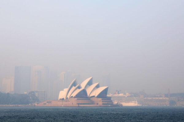 野火籠罩 悉尼危急 動物園急撤300隻動物