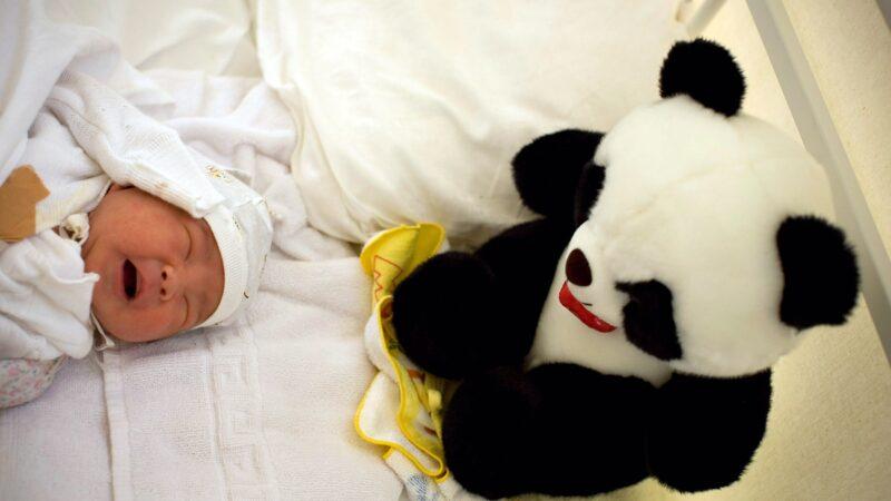 大陸人販子好大膽 扮護士進醫院偷嬰兒