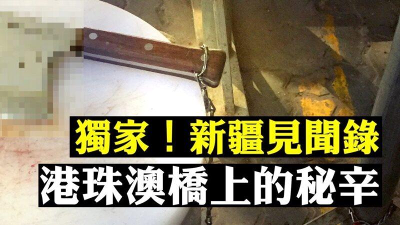 """【拍案惊奇】港再现离奇坠亡案;港人大桥人工岛""""被送中"""""""