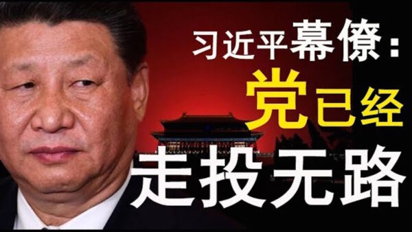 【老北京茶館】廣東茂名「時代革命」嚇壞黨!香港38萬人再遊行!習近平幕僚:「我們已走投無路!」
