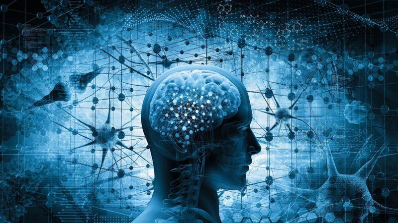 簡便藥物或可阻止納米顆粒進入腦部