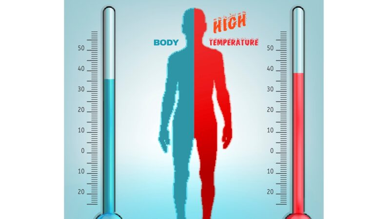 人类体温自十九世纪不断下降