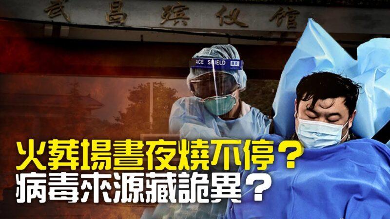 世界的十字路口:火葬场为何昼夜烧不停?病毒来源藏诡异?