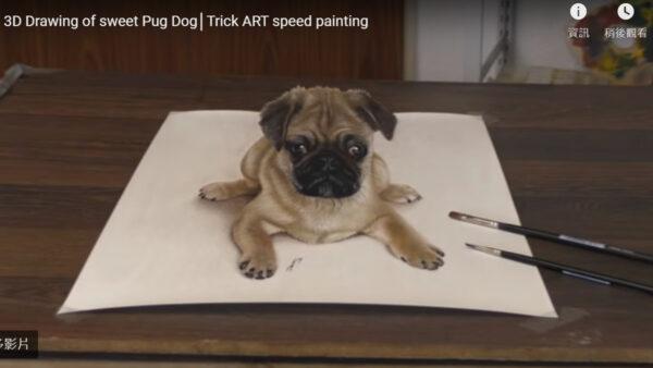 德男超寫實3D繪畫 會讓你產生視錯覺(視頻)