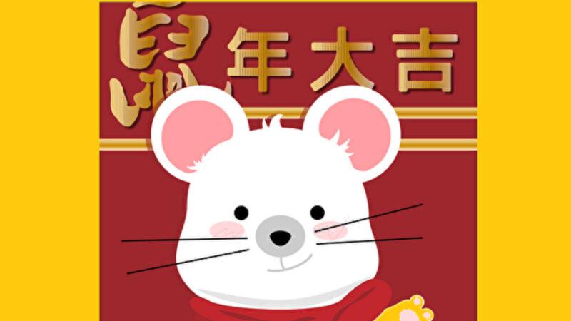 鼠年话鼠:灵鼠和钱鼠